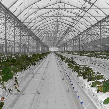 armenia-greenhouse-feature-story-main-banner1-1920x960